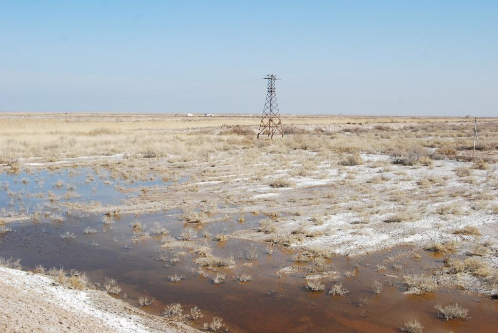 塩類集積の仕組みとは | 旅と地...